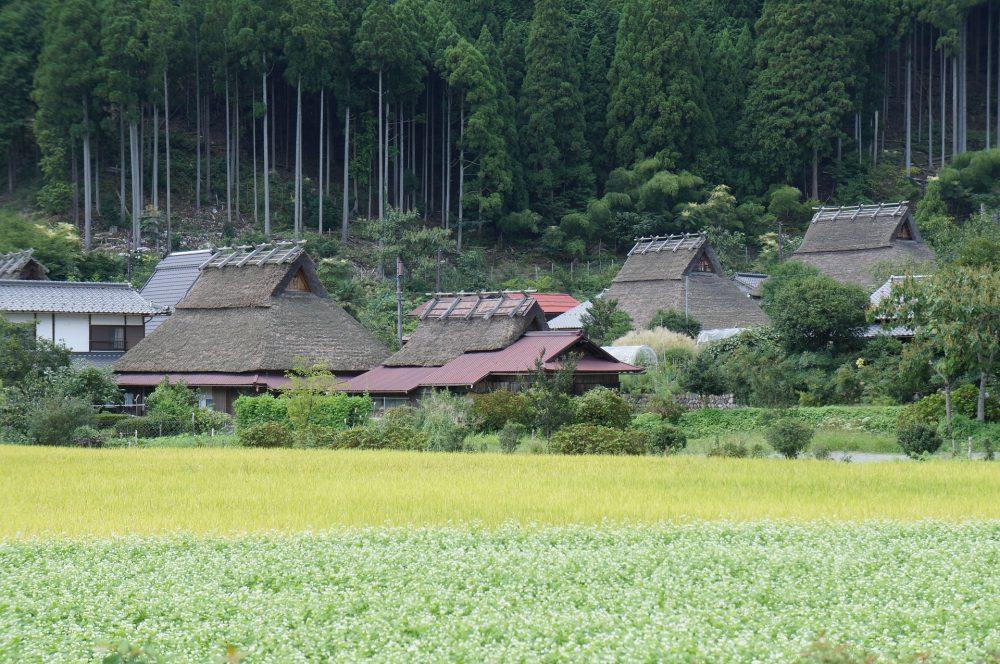 Miyama (Kyoto)
