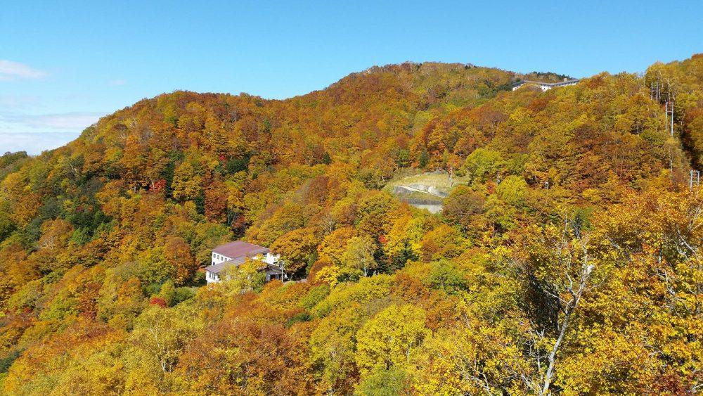 Shiga Kogen (Nagano)