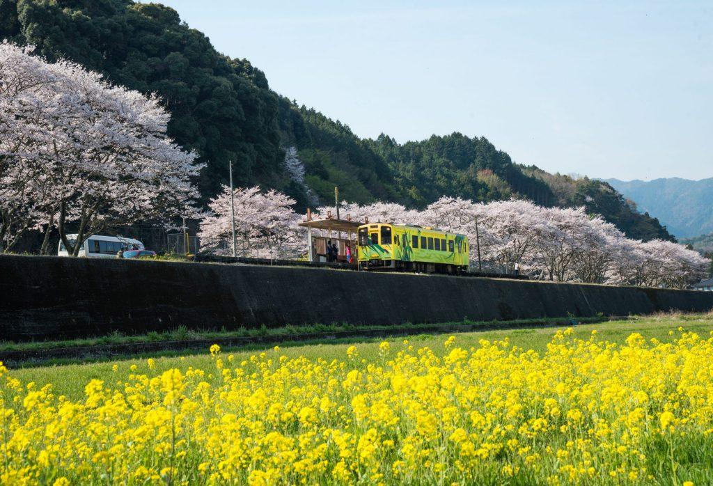 Shunan (Yamaguchi)