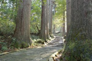 Haguroyama image 3