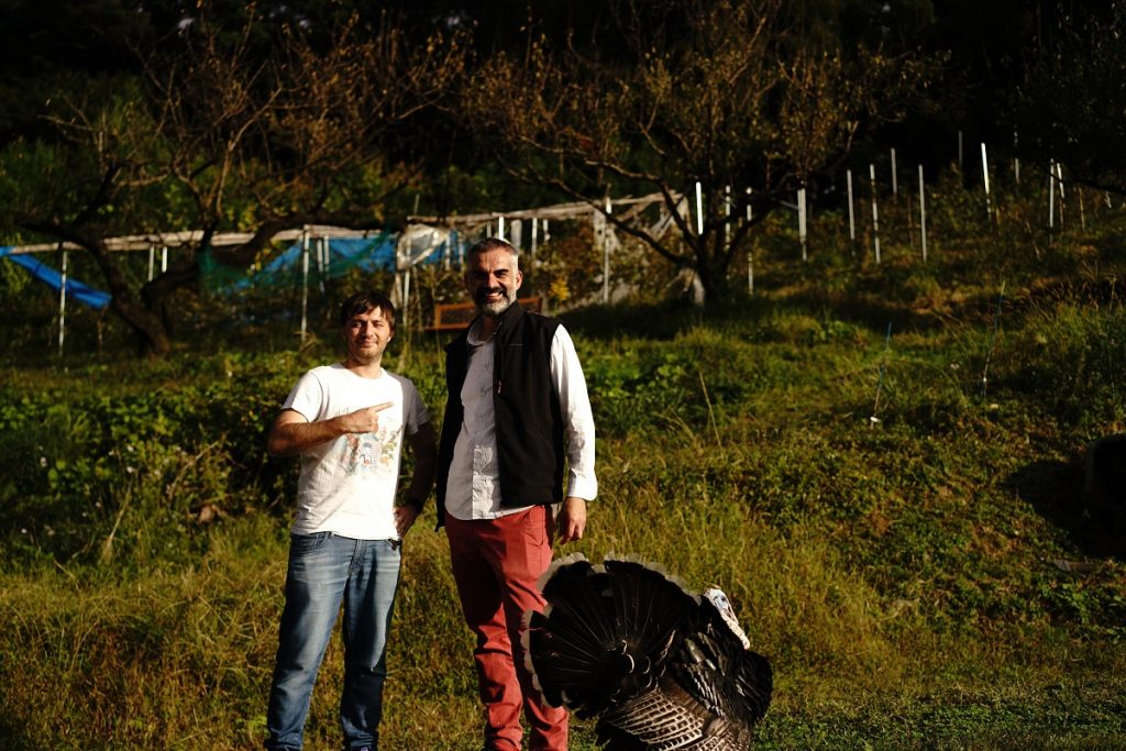 Agriturismo Kumano Kodo Winery